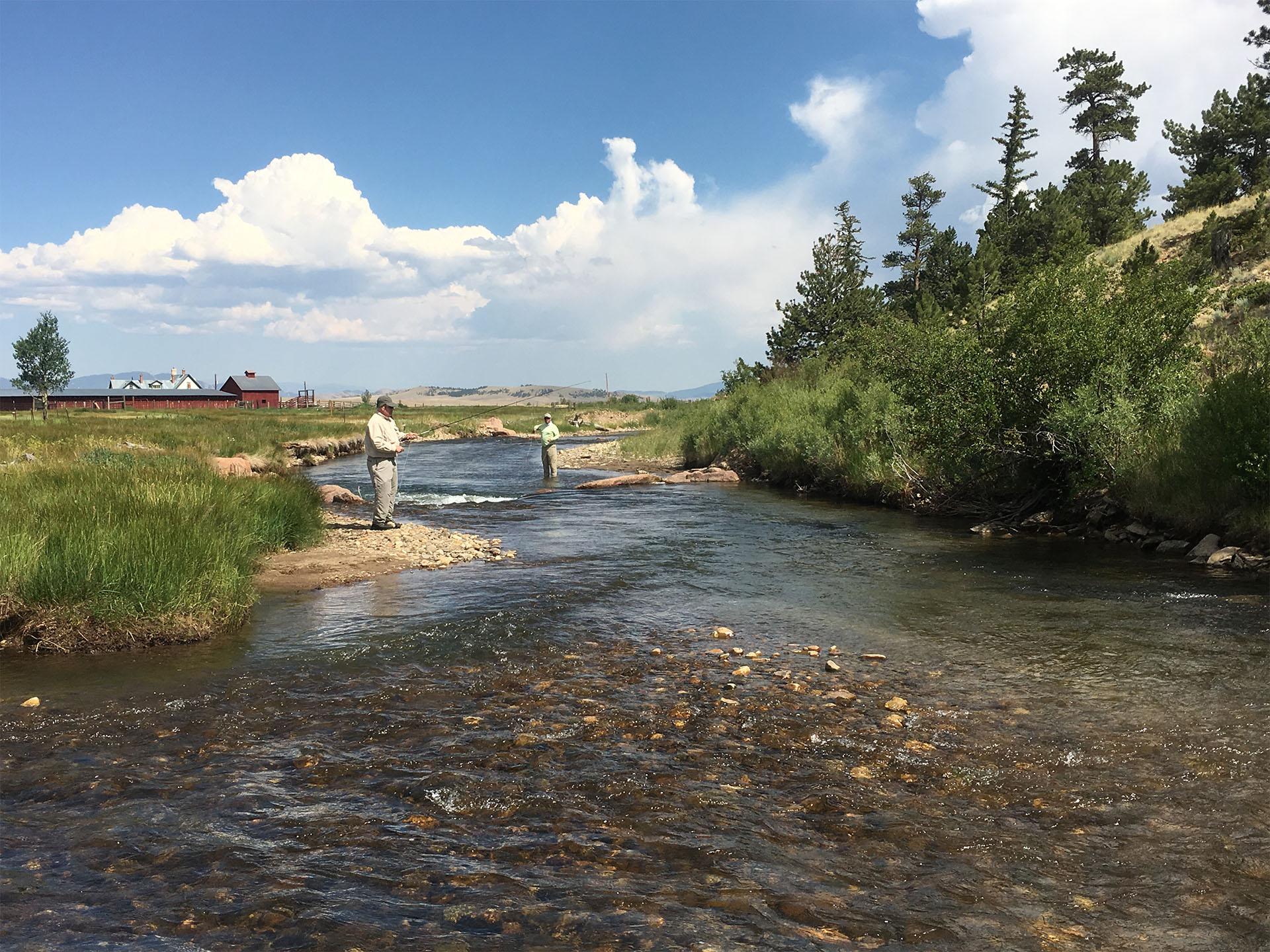 Santa Maria Stream